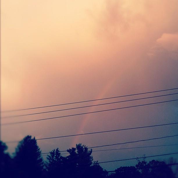 evolutionyou.net | rainbow