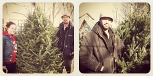 evolutionyou.net   christmas tree lot