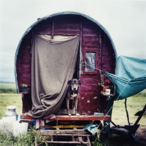 evolutionyou.net | gypsy wagon