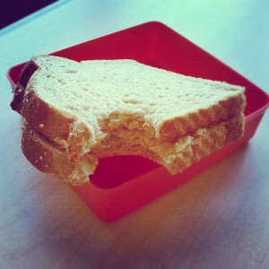 evolutionyou.net | hummus sandwich