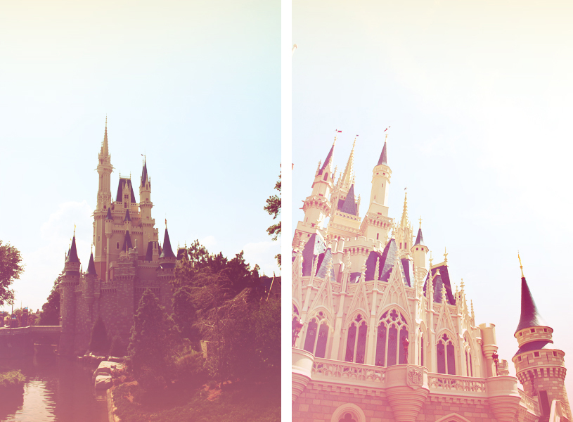 evolution you / Disney World
