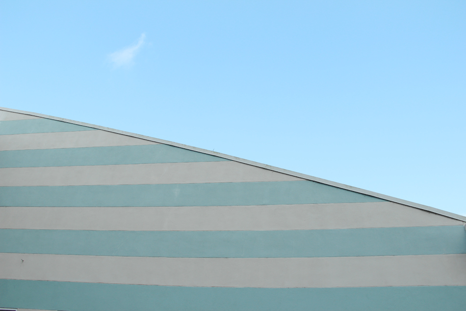 evolutionyou.net | disney architecture