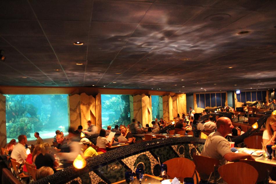 evolutionyou.net | Coral Reef Restaurant