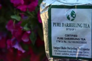 evolutionyou.net | darjeeling tea