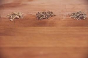evolutionyou.net | spices