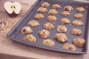 evolutionyou.net   peanut butter apple walnut cookies