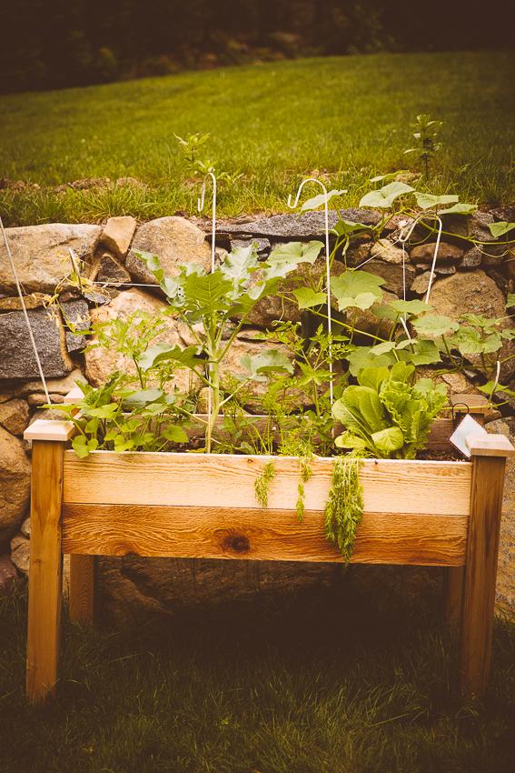 yard garden   livelovesimple.com