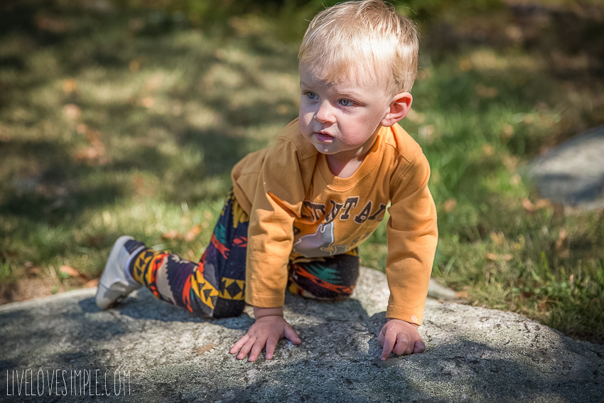 toddler-autumn-style-11
