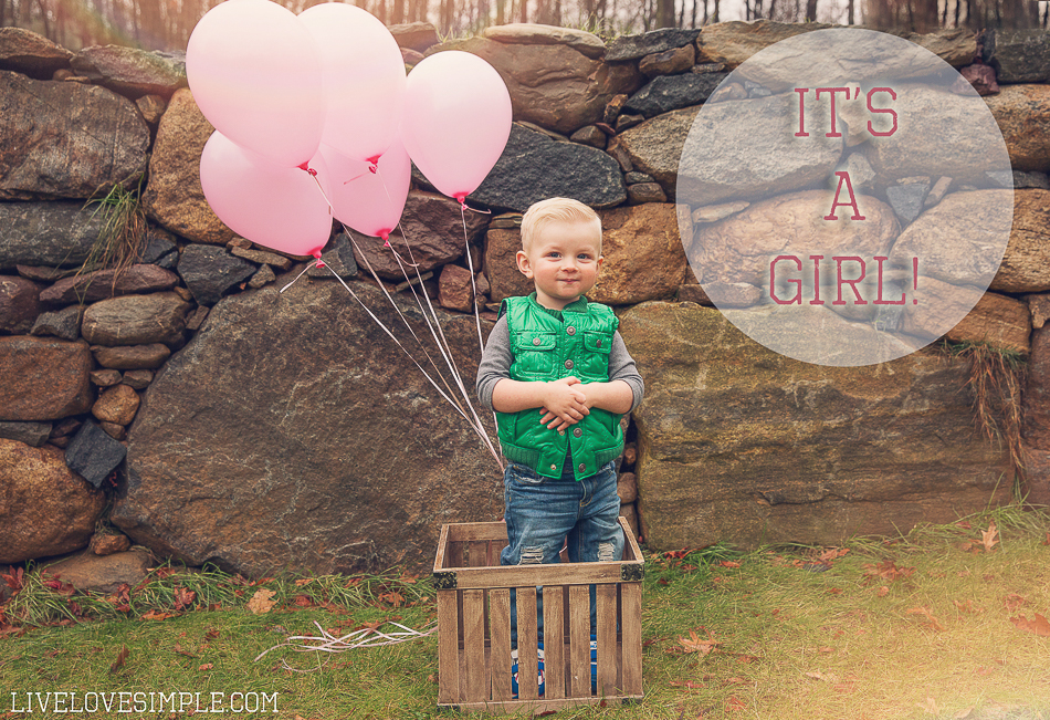 gender reveal | livelovesimple.com