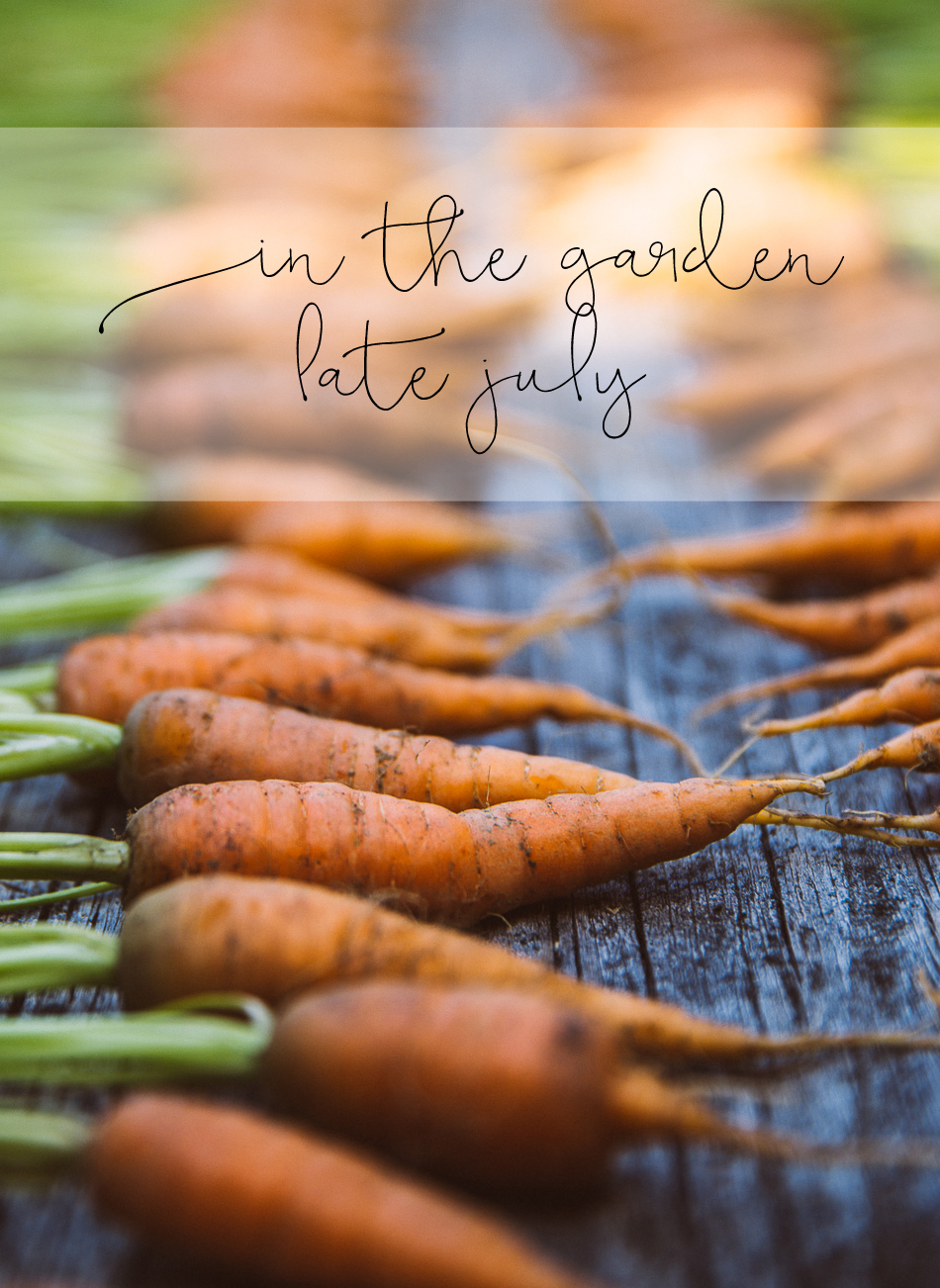 in the garden // livelovesimple.com