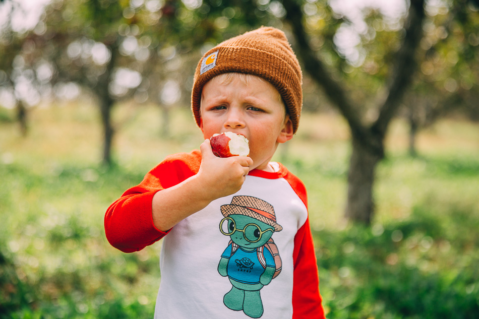 Organic Apple Picking // livelovesimple.com