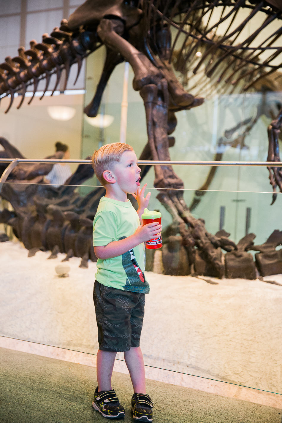 Museum of Natural History // livelovesimple.com