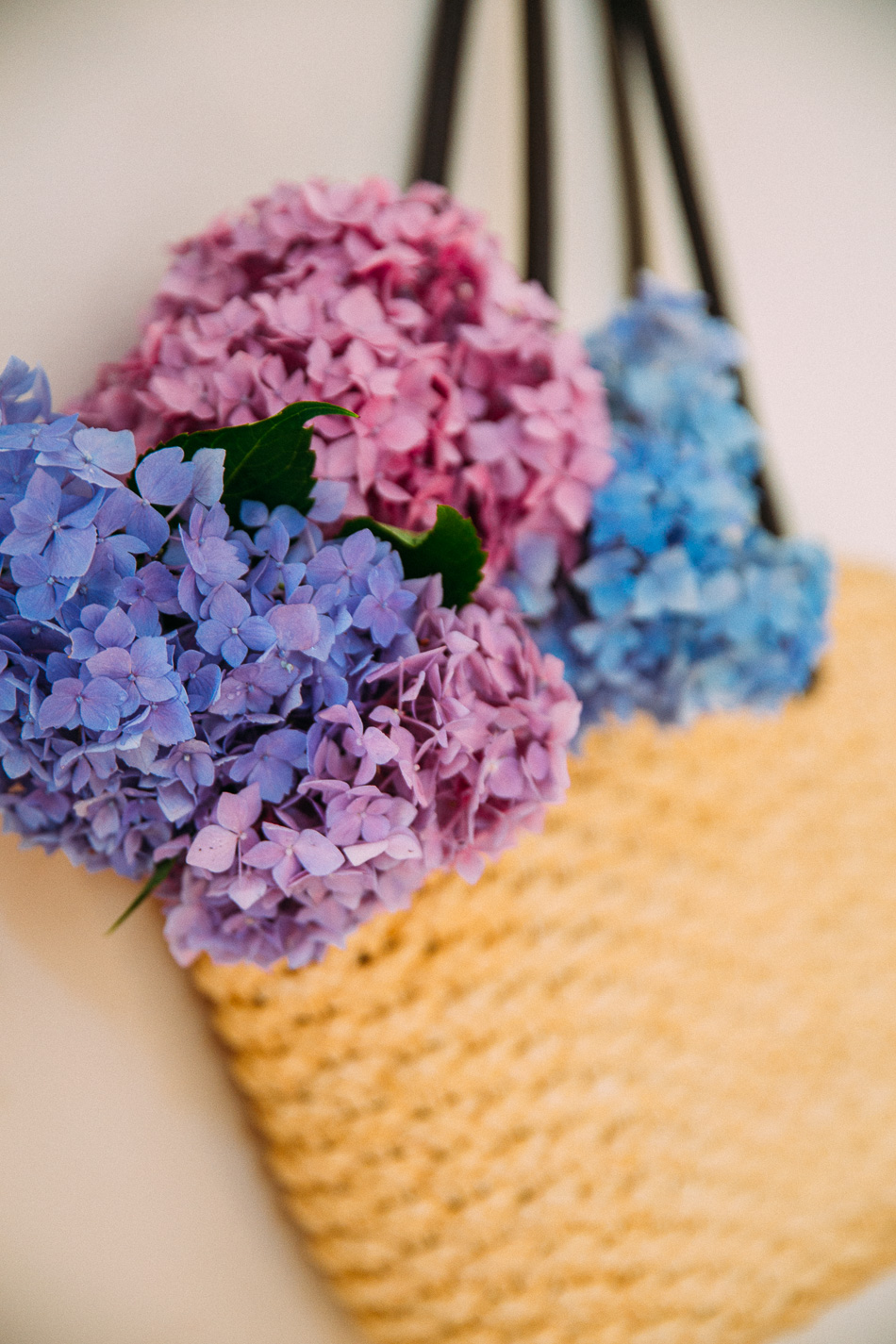 hydrangeas // livelovesimple.com