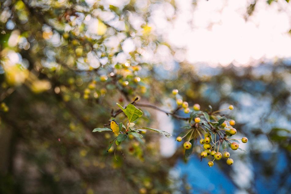 livelovesimple.com // autumn