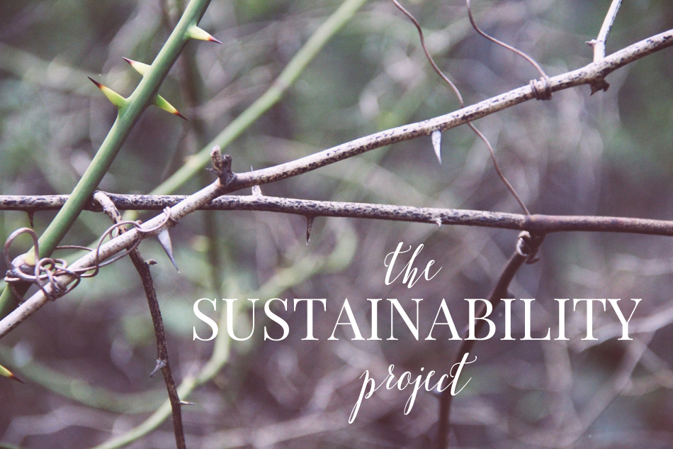 The Sustainbility Project