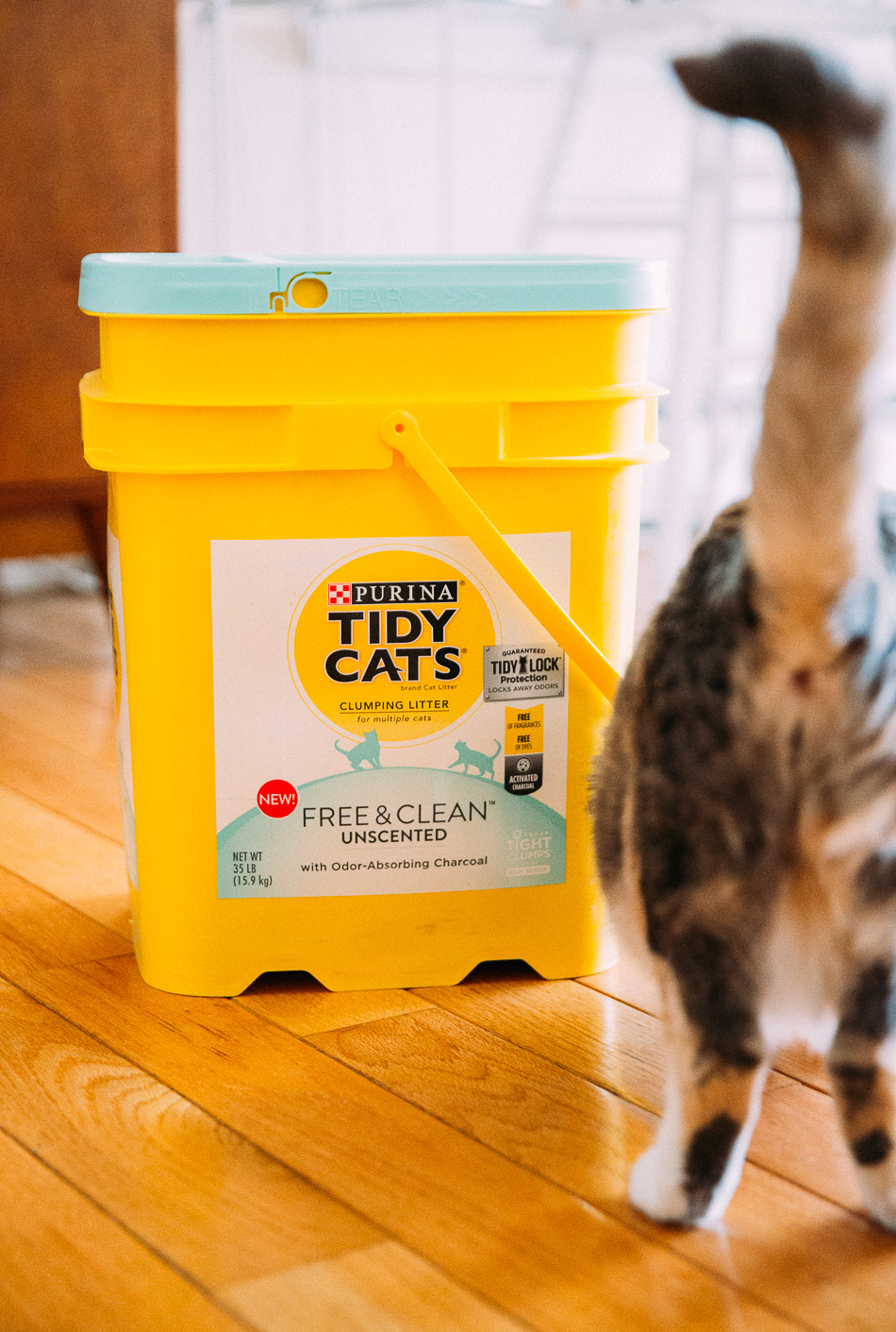 tidy cats & target